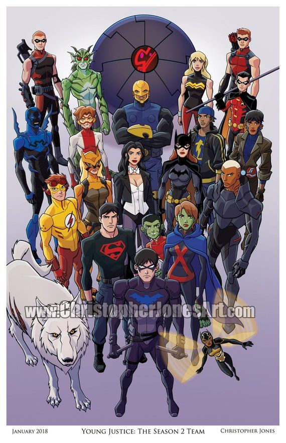 Young Justice: The Season 2 Team