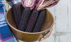 It's sweetcorn, but not as you've seen it before | Life and style | The Guardian