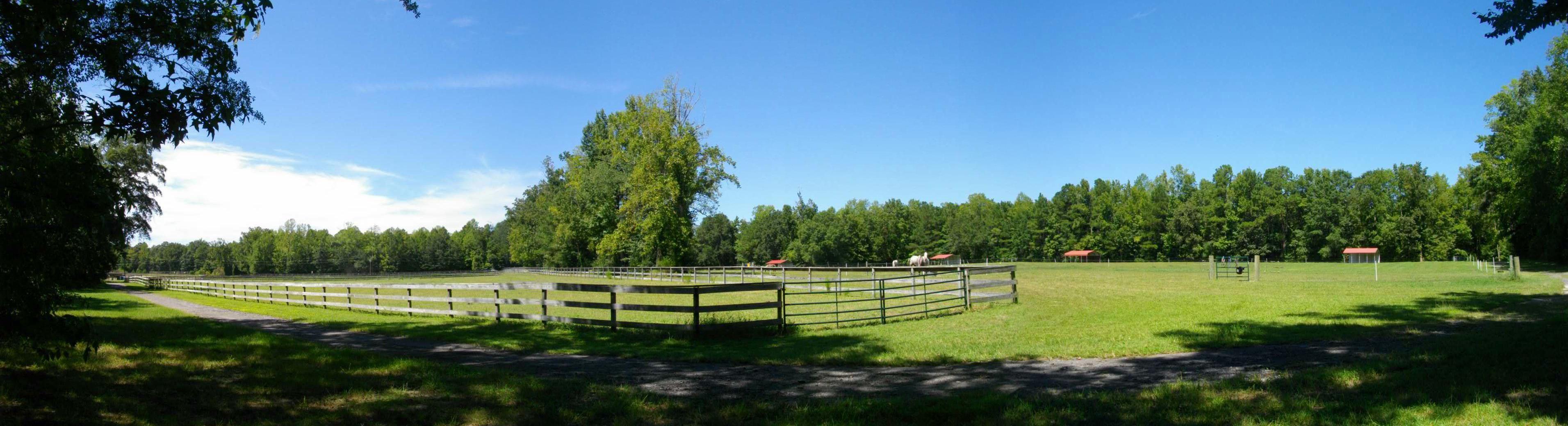 Out 2 da pasture