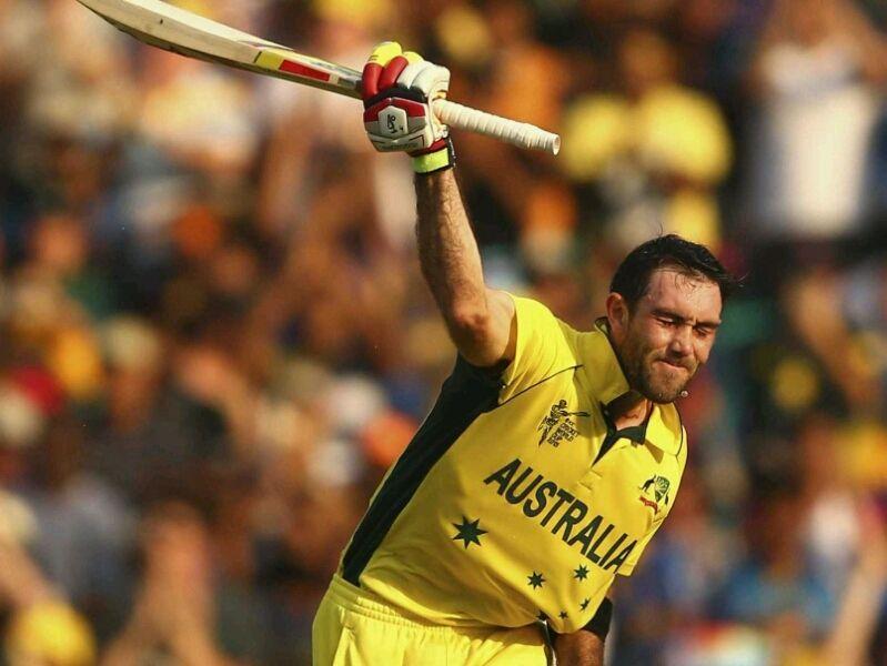 Pin on Cricket