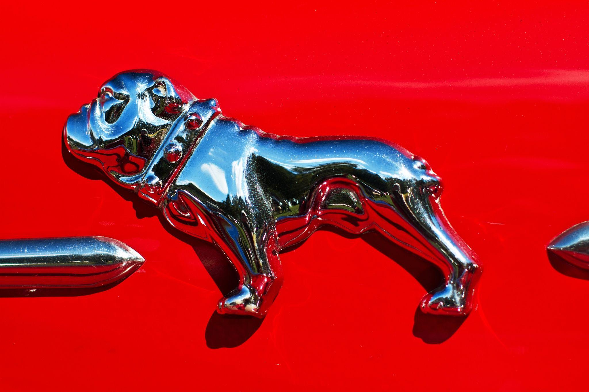 Pin by Kristine on Auto emblems & hood ornaments Mack