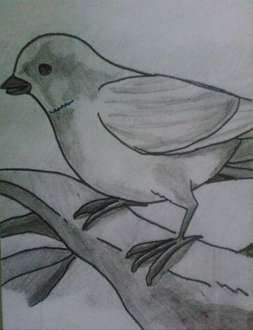 Pin En Dibujos A Lapiz
