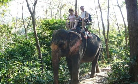 I would LOVE an elephant tour...but only if they were well taken care of and not abused (this will need investigating before hand)