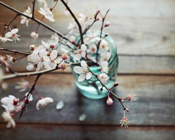 Rustic Still Life Flower Photography Vintage Blue Jar Nature Print Barn Wood Wall Art Pink Flowers Fallen Petals