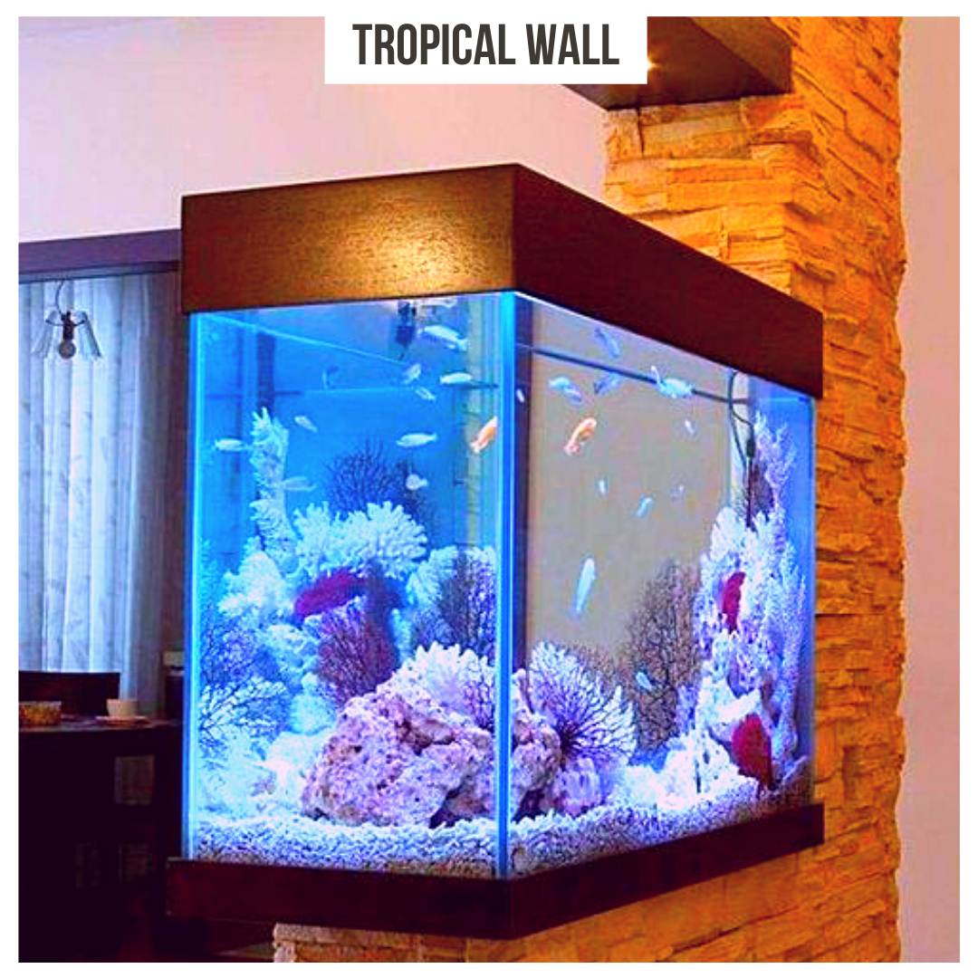 An aquarium is the ideal element to bring a wave of well-being to the home. it saves space and it's aesthetically pleasing.#TheStephensGroup #Realtor #EdwardStephens #Sold #NewHome #Home #HomeForSale #RingTheBell #NewListing #Broker #HouseHunting #MillionDollarListing #HomesForSale #ForSale #KansasCity #KCMO #Instakc #igkansascity #igkc #luxury #chiefs #Kansas #Missouri #ChiefsKingdom #MadeInKC #ChiefsNation #ReppinKC #KCRoyals #Houses #HousesofInstagram #RealEstate #Renovated #KC #KCRealtor