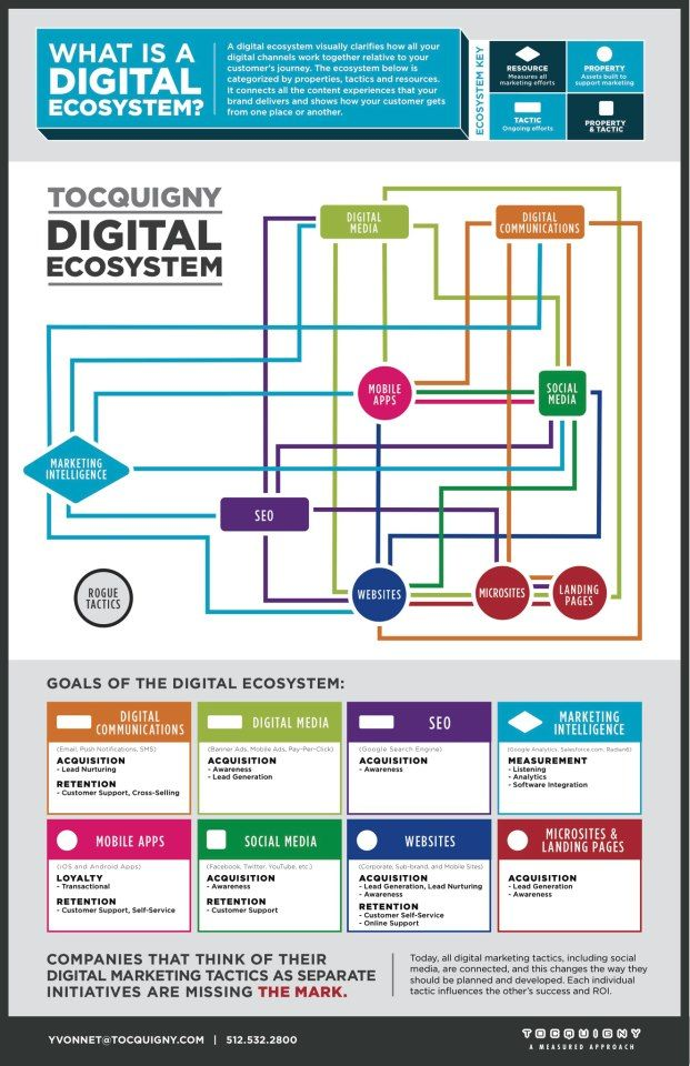 What Is A Digital Ecosystem  Infographix    Digital