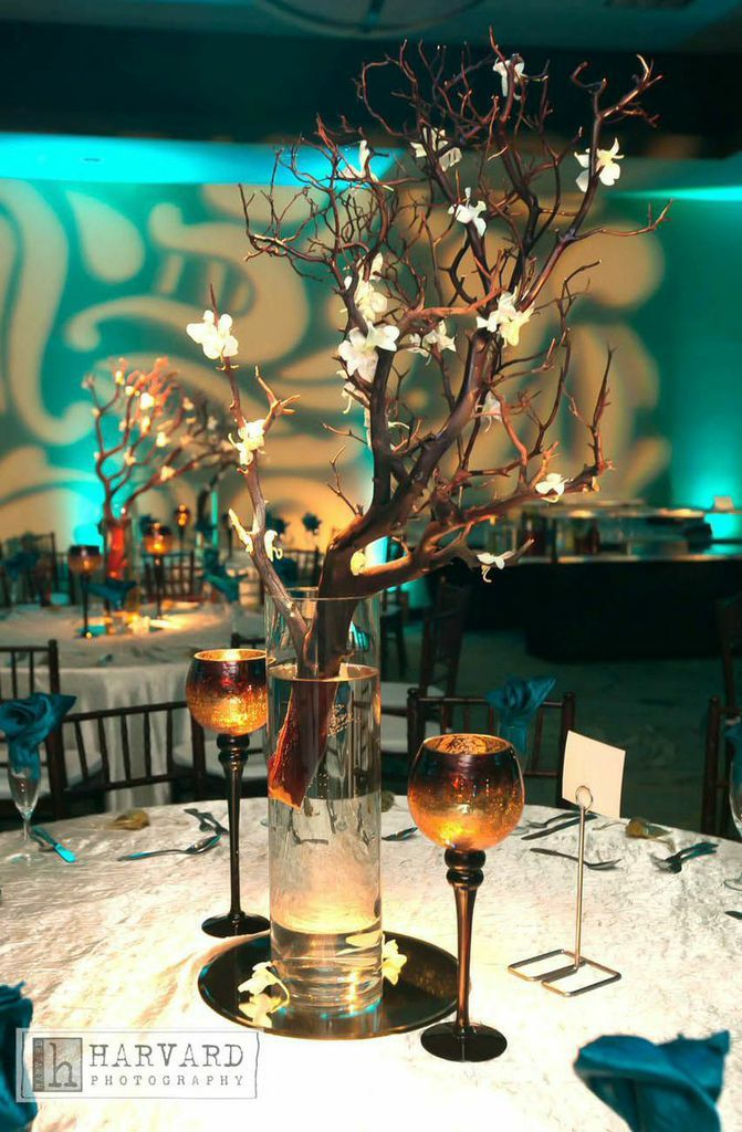 2Create Natural Teals decor!