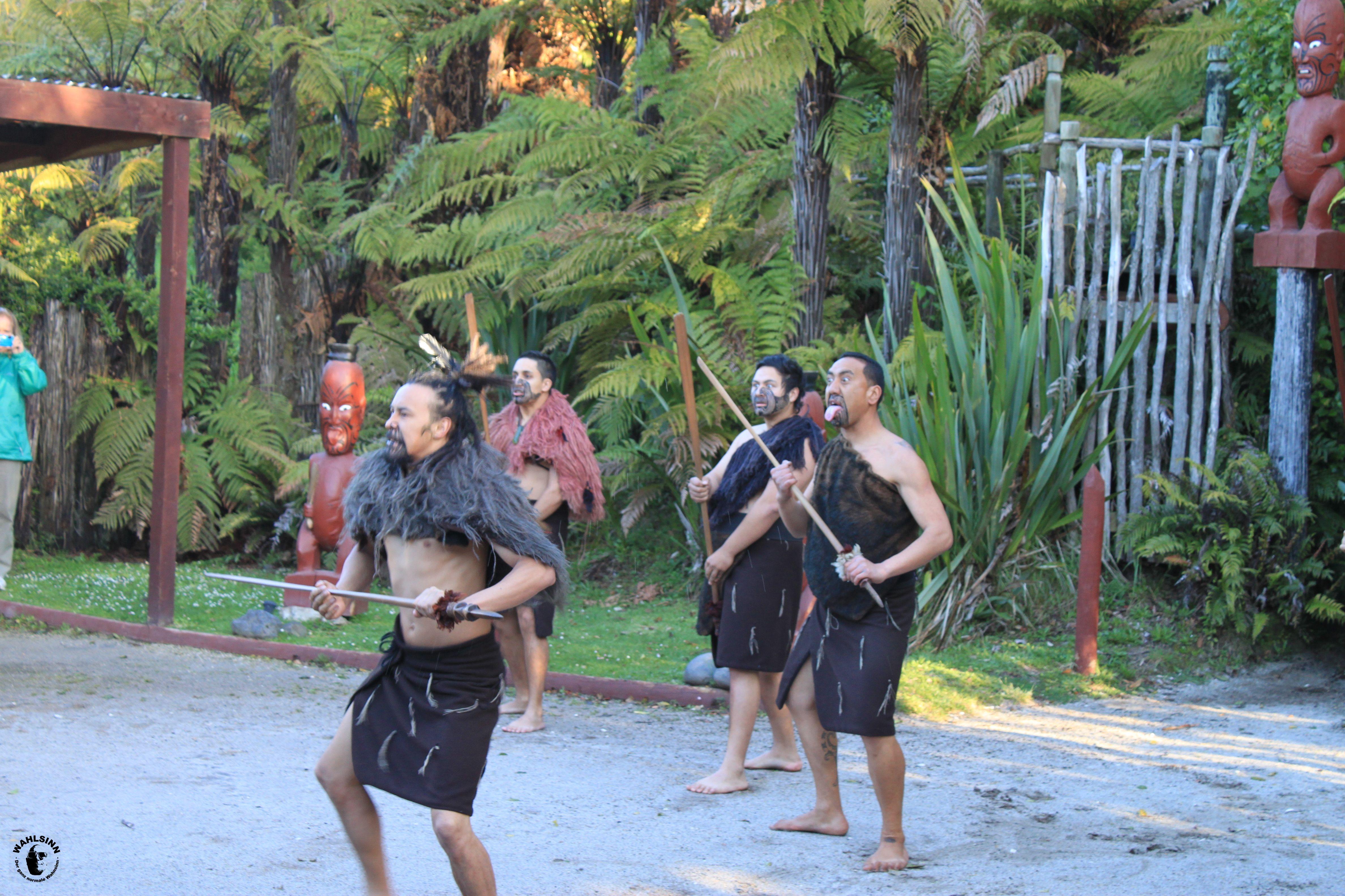 Man muss den Tanz der Maori bestehen und Respekt zeigen um ins Dorf zu kommen // Neuseeland