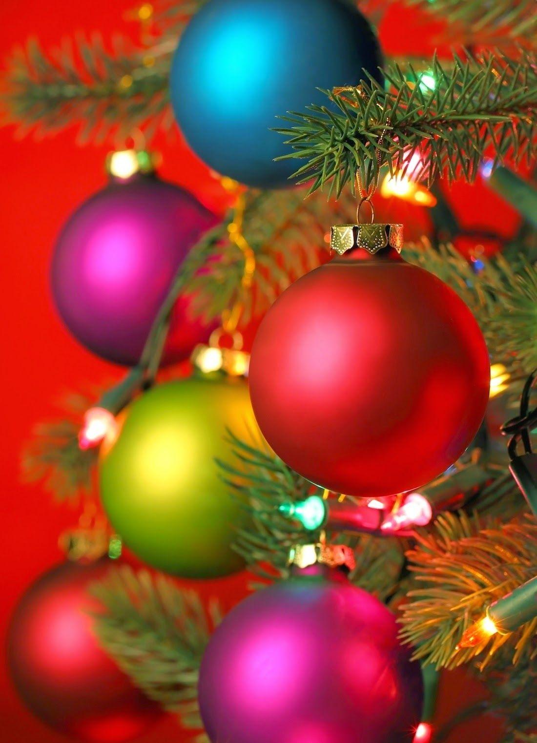 Colorful Christmas Ornaments On Tree Christmas Live