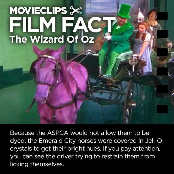 'The Wizard Of Oz' #FilmFact - Horse of A Different Color