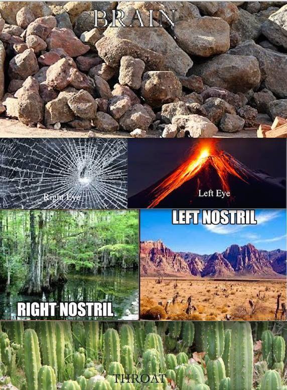 Funny Sick Memes Tumblr