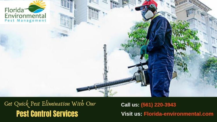 Get Quick Pest Elimination With Our Pest Control Services Pest Management Pest Control Services Pest Control