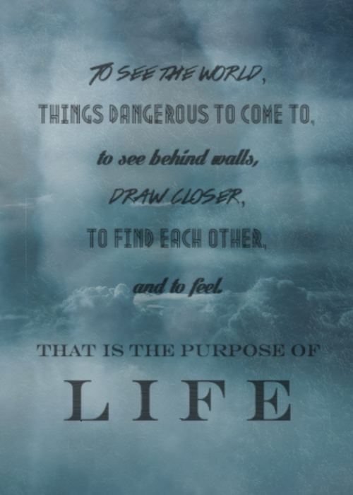Secret Life Of Walter Mitty Quotes | The Secret Life Of Walter Mitty Quote Definitely One Of My Top