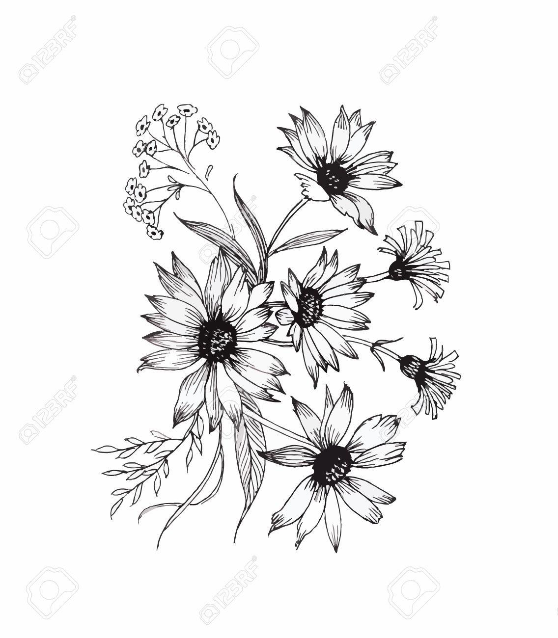Dessin De Fleur En Noir Et Blanc Tatouage Clés Dessin Fleur