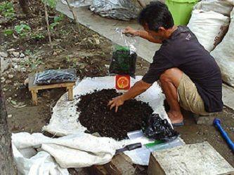 Cara Mengolah Sampah Organik Dan Anorganik Cara Mengolah Sampah