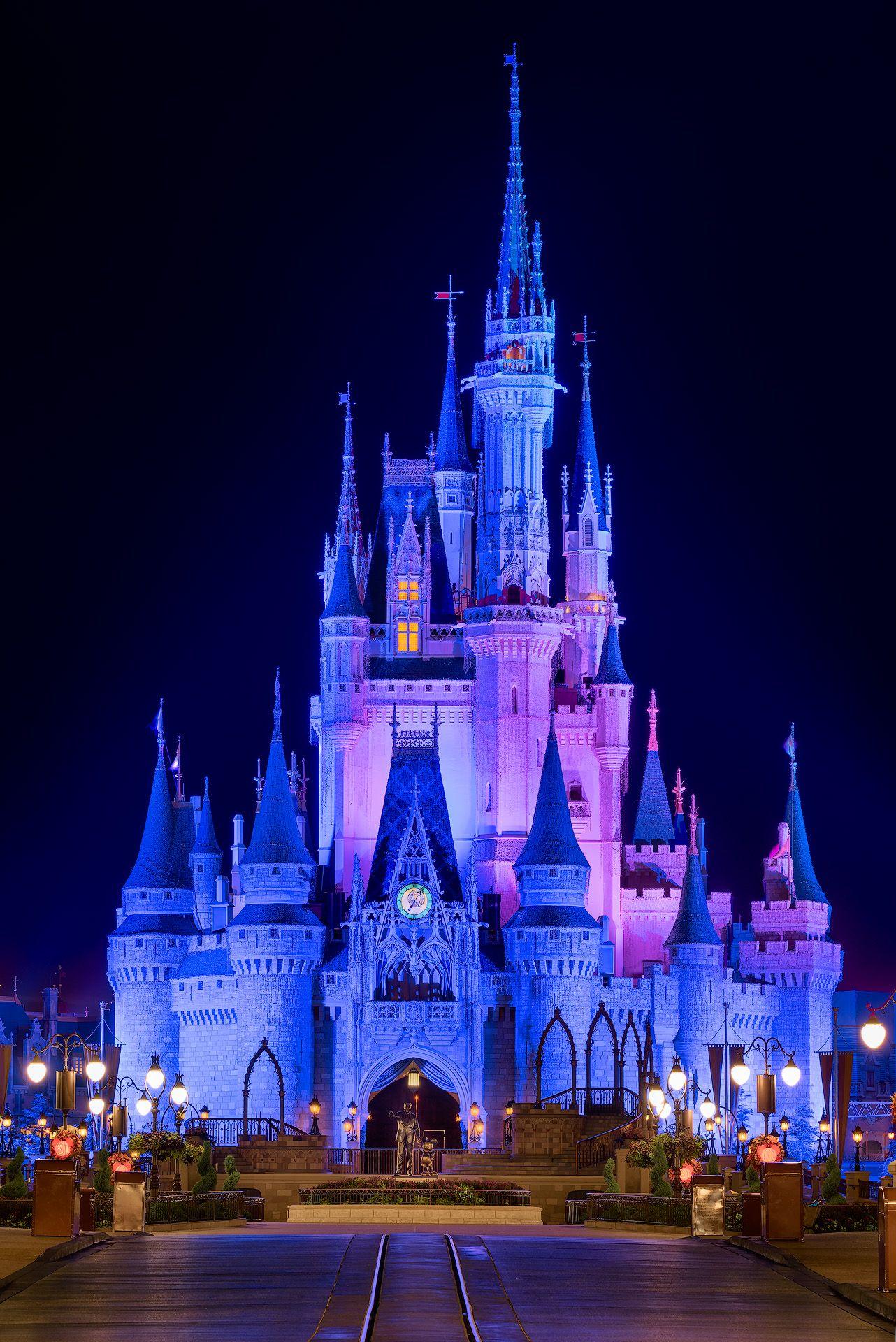 Cinderella Castle Nights Disney Moodboard