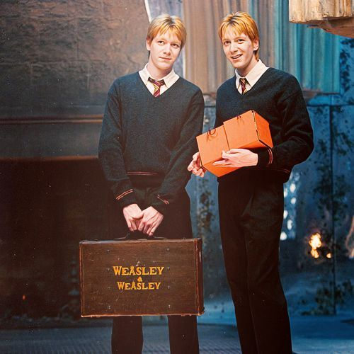 Would You Survive A Day In The Life Of Harry Potter Love Harry Potter Visit Us Worldofharry Harry Potter Characters Fred And George Weasley Weasley Twins