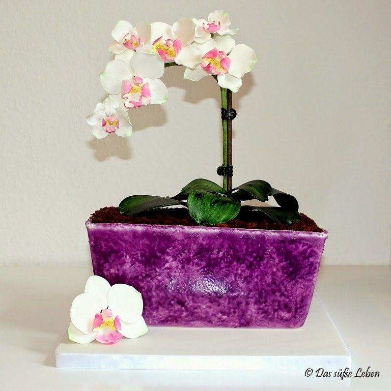 das s e leben orchideentopf 3d torten pinterest. Black Bedroom Furniture Sets. Home Design Ideas
