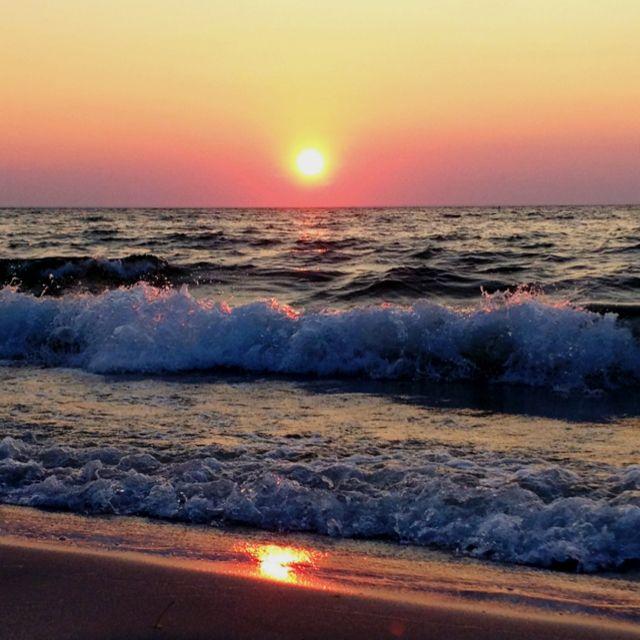 Mayflower Beach- Cape Cod