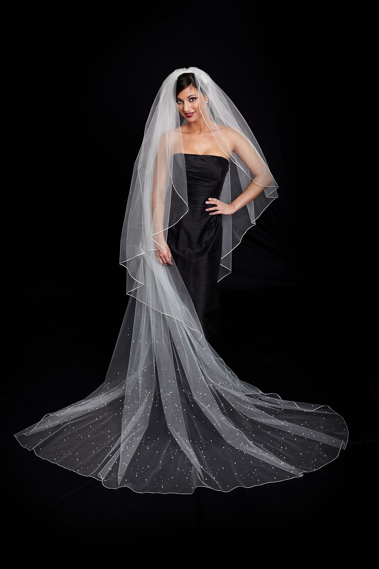 Toni Federici chapel length bridal veil heavily beaded
