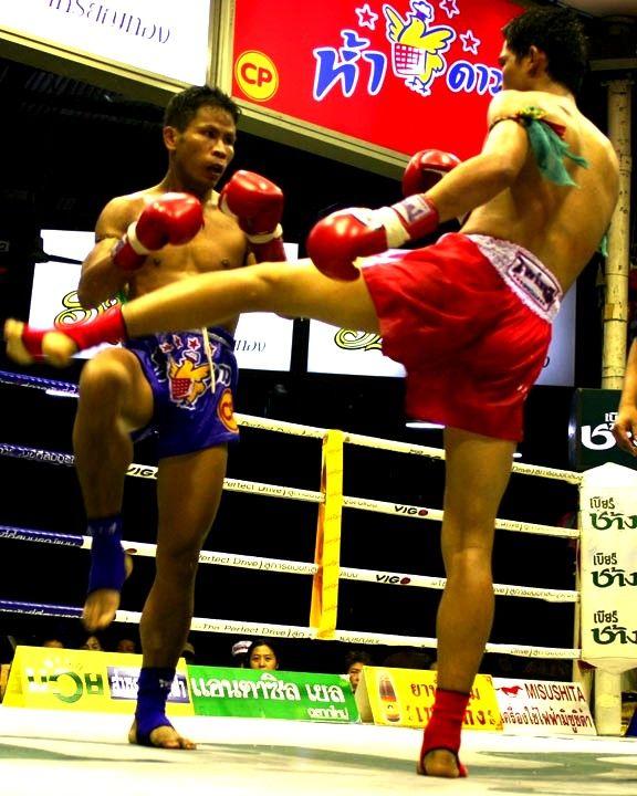 Mixed Martial Arts Games: Muay Thai, Boxing Training, Kickboxing