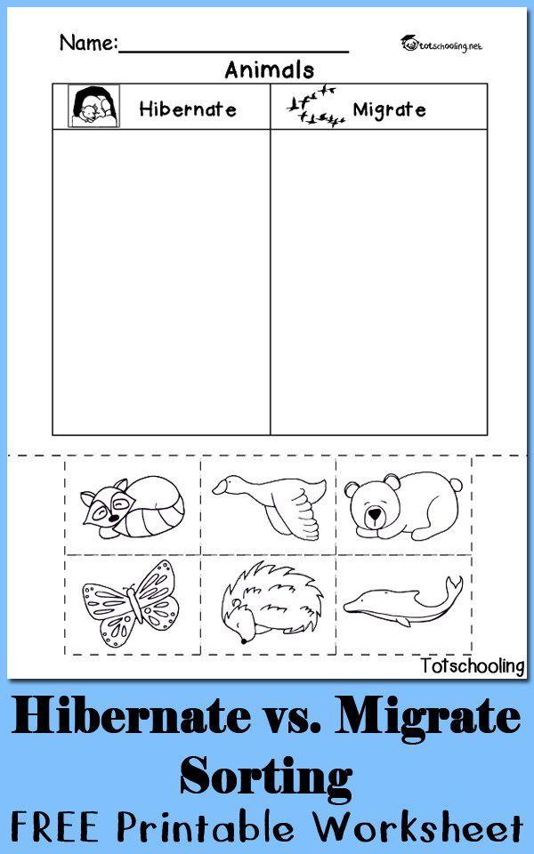 Hibernation vs. Migration Animal Sorting Worksheet | Homeschooling ...