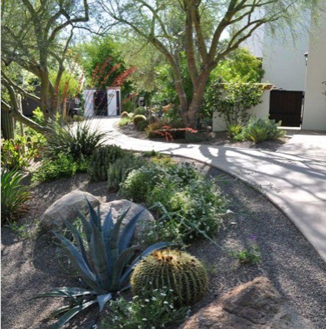 jardines con cactus