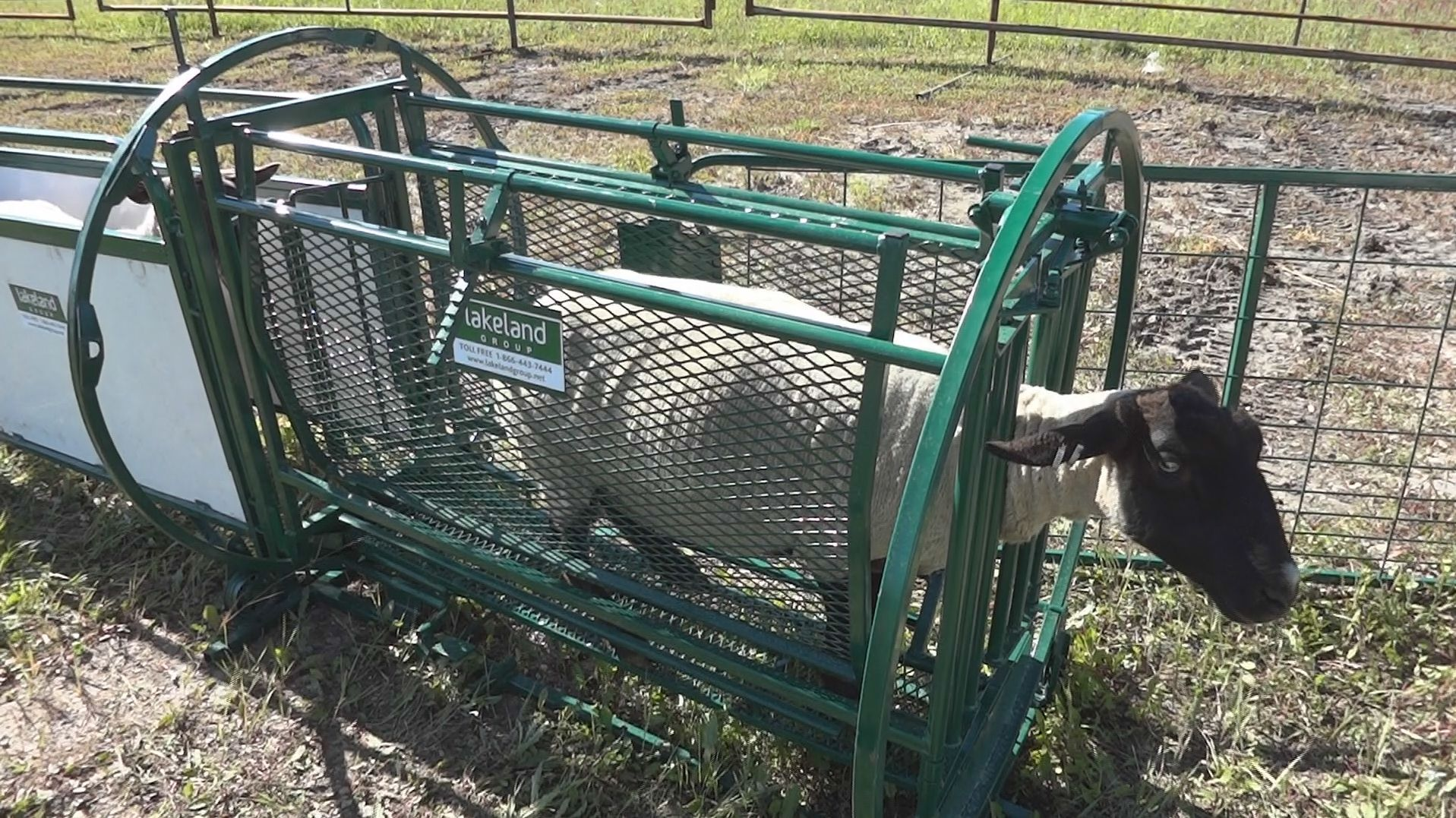 Spin Trim Chute Dst Lakeland Farm And Ranch Direct In 2020 Farm Cattle Farming Lakeland
