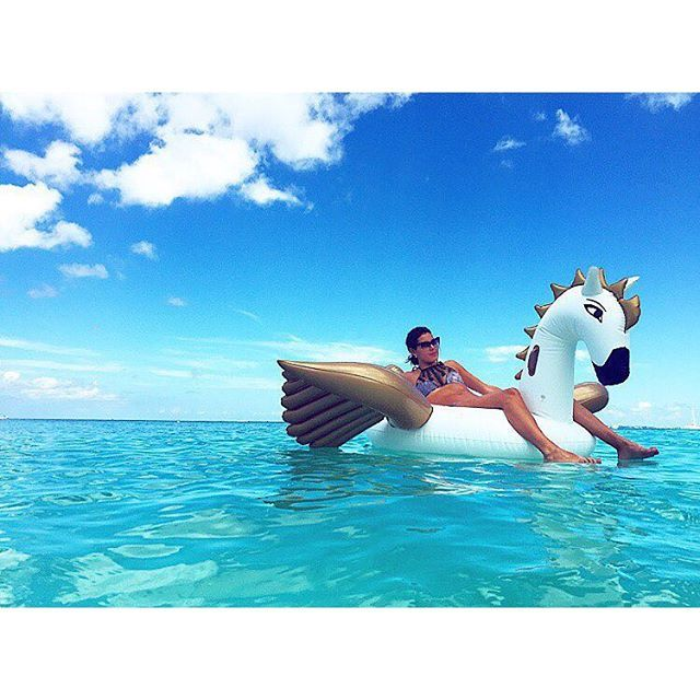 Pegasus Pool Float Pool Floats Pegasus And Luxury