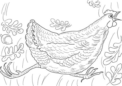 Henny Penny Is Screaming The Sky Is Falling Coloring Page With