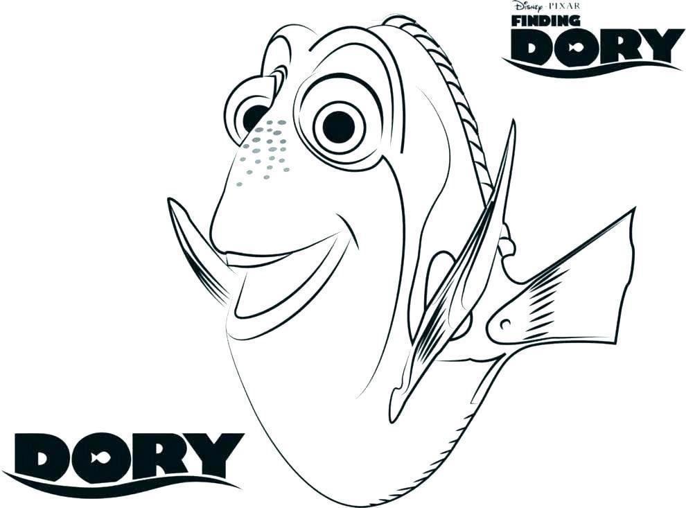 Dory Para Colorear Dibujos Para Pintar Dibujos Para Colorear Nemo Y Dory
