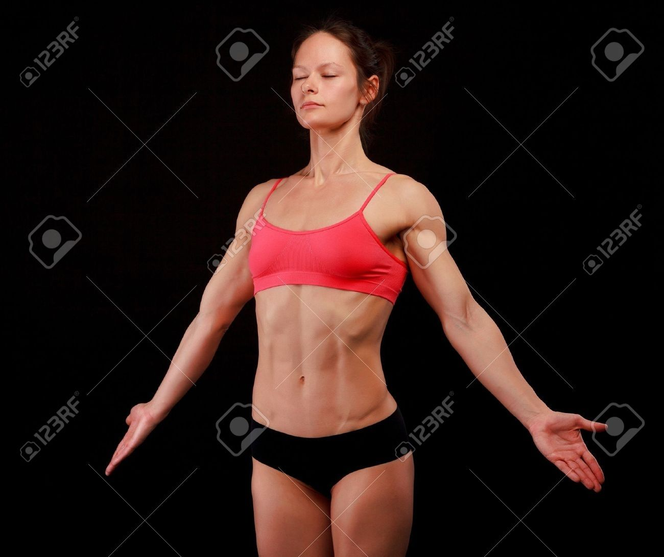 Abdominal Muscle Anatomy Female Abdominal Muscle Anatomy Female