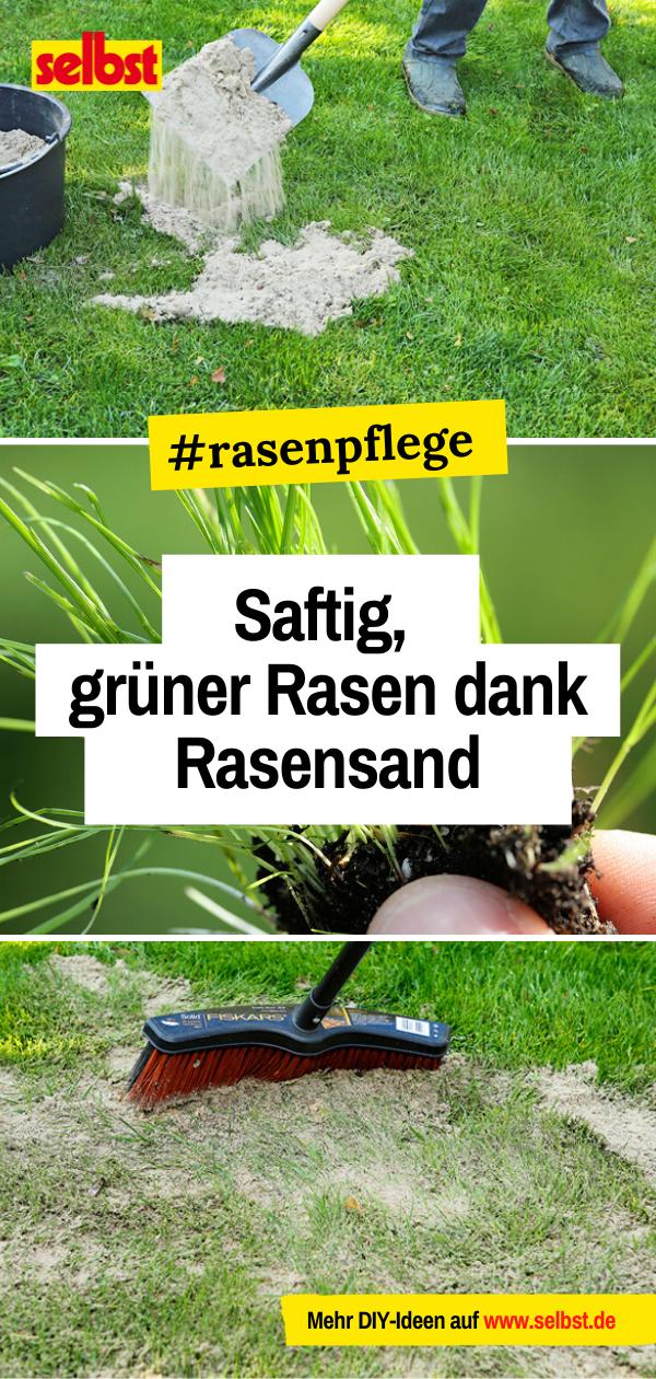 Rasen Sanden Selbst De Rasen Erneuern Rasen Garten Pflanzen