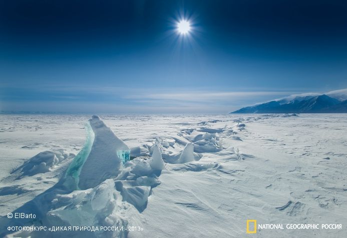 National Geographic concours photo nature sauvage de la Russie