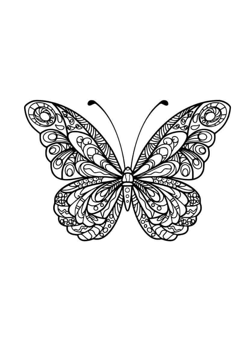 Butterfly Butterfly Coloring Page Butterfly Drawing Butterfly Mandala [ 1123 x 794 Pixel ]