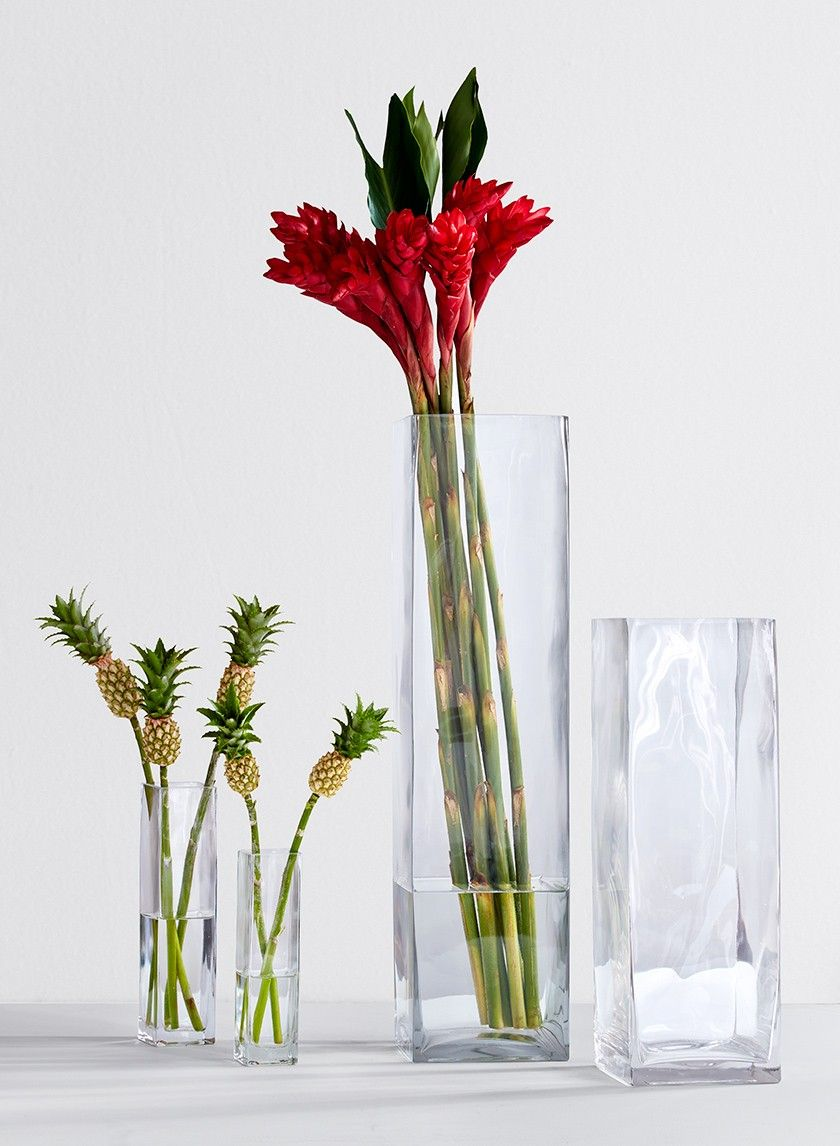 8-, 10-, 16 1/2-, & 24-inch High Square Glass Vases | Clear glass ...