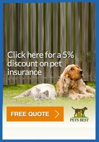 A Link To Pets Best Insurance With A Discount Animal Hospital Animals Cool Pets