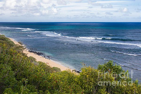 Pin by suzanne luft photography on my travel photography kauai coastline by suzanne luft reheart Image collections