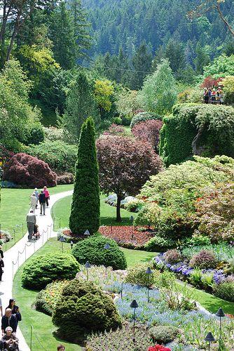 DSC_0485   Butchart gardens, Beautiful flowers garden ...