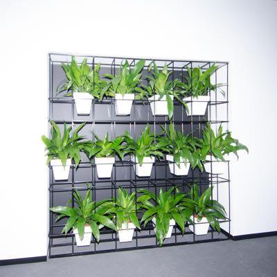 horticulture of australia HAL pot plant vertical garden Garden