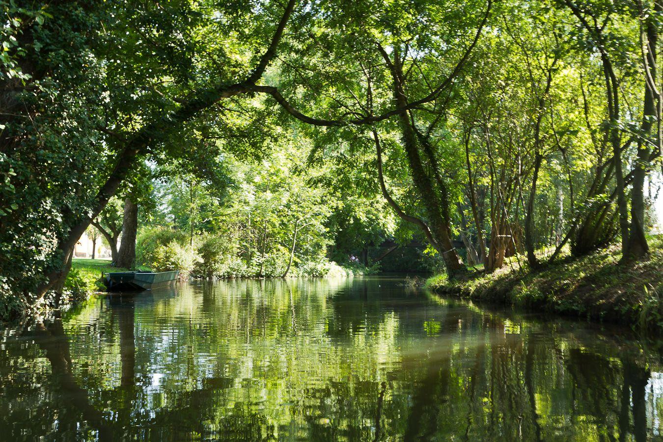 Der Spreewald in Brandenburg   Outdoor, Water, Canal