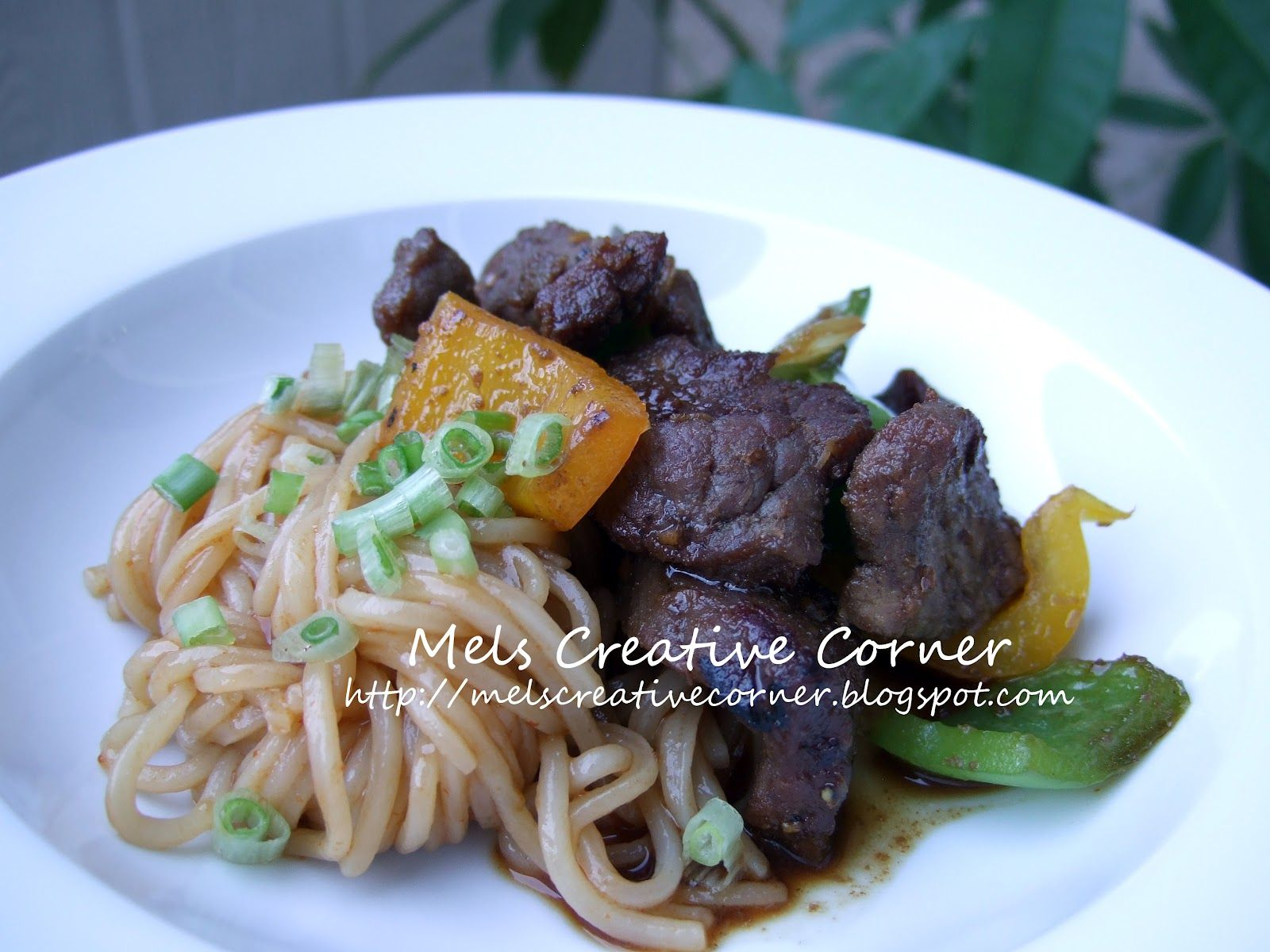 Spicy Noodles with Beef Satay Stir Fry