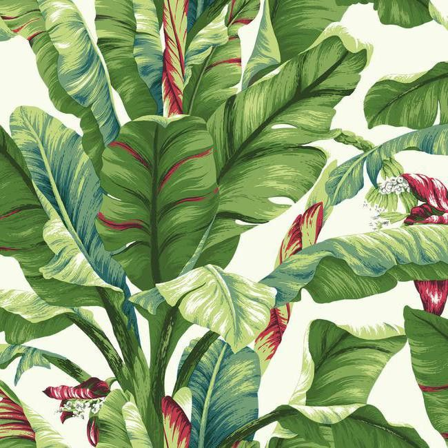 Banana leaf wallpaper in green and red design by york wallcoverings