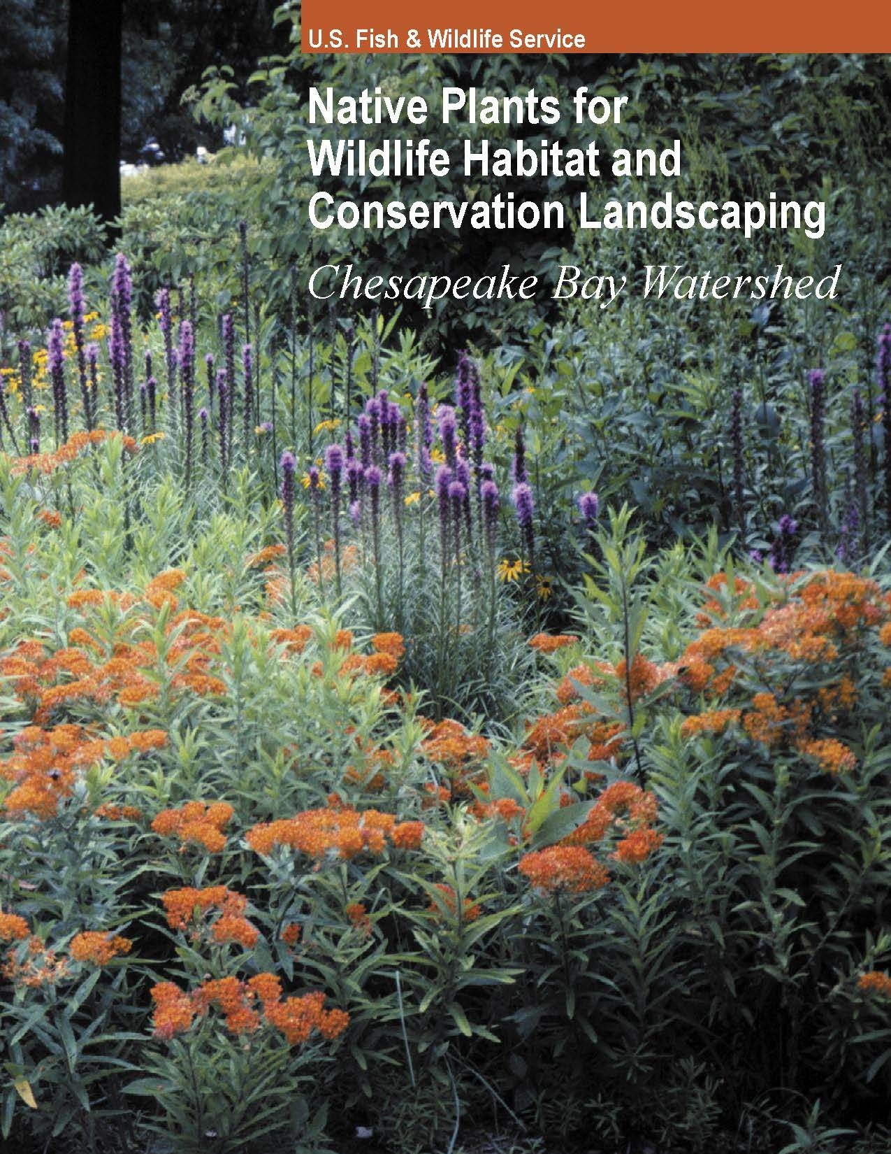 NATIVE PLANT CENTER  A searchable collaborative catalog of native plants in the Chesapeake Bay region