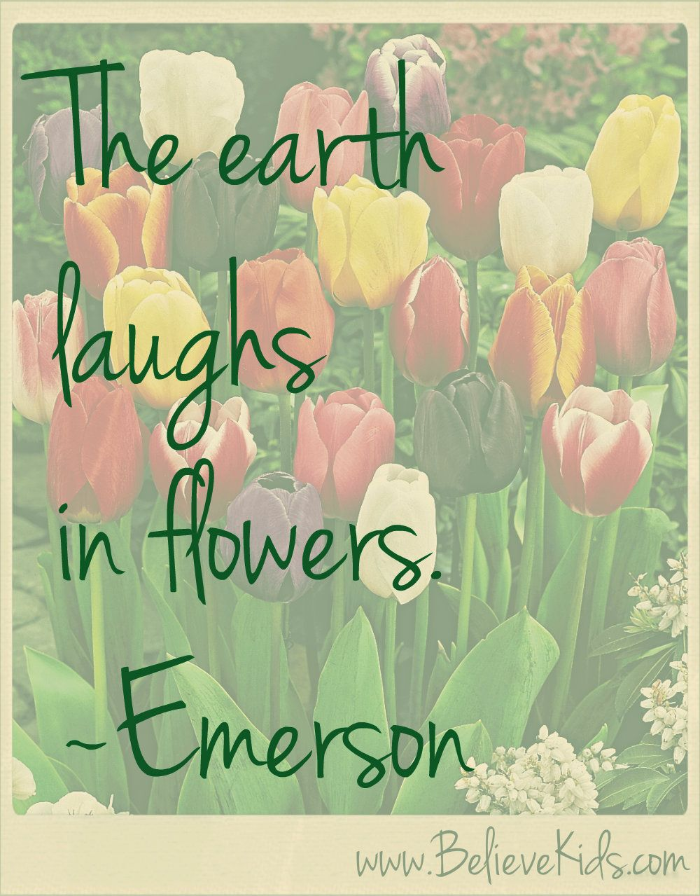 Wonderful ~Emerson Perfect Spring Quote! Bring The Flowers.