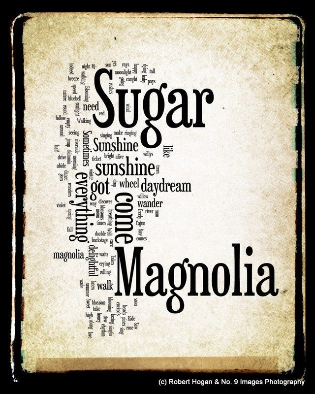 Lyric fire on the mountain grateful dead lyrics : Sugar Magnolia Lyrics - Grateful Dead Word Art - Word Cloud Art ...