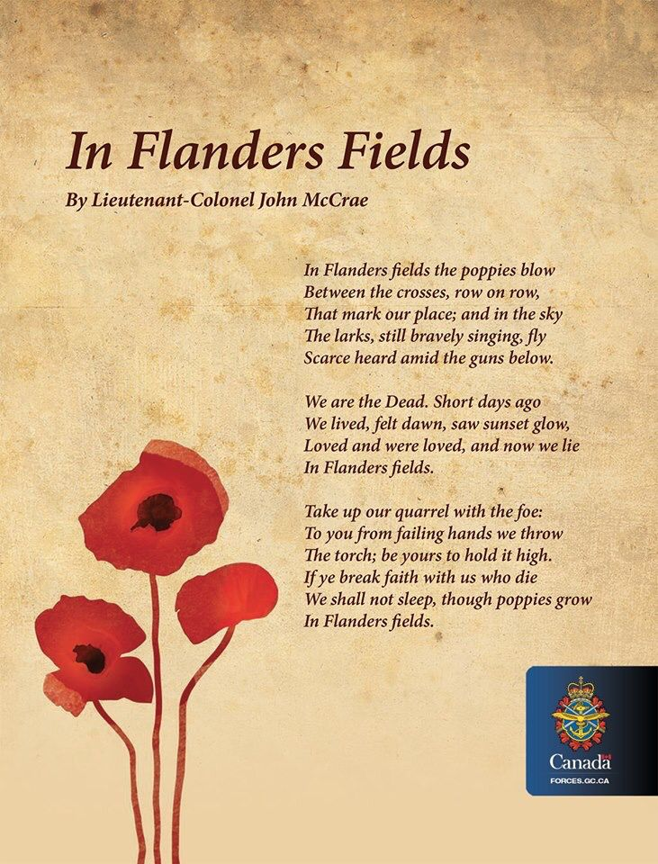 Flanders Fields Flanders Fields Poem Flanders Field