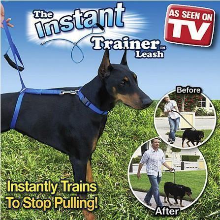 Instant Dog Trainer Leash Dog Leash Training Dog Leash Pulling