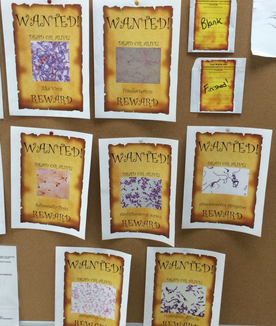 Micro wanted poster lab week game. Pics hidden around lab