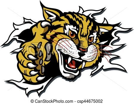 vector wildcat mascot stock illustration royalty free rh pinterest com